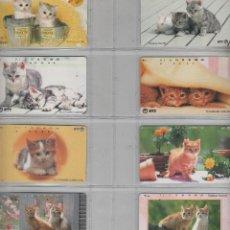 Cartes Téléphoniques de collection: LOTE DE 8 TARJETAS DE GATOS. Lote 42541166