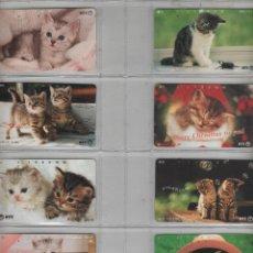 Cartes Téléphoniques de collection: LOTE DE 8 TARJETAS DE GATOS. Lote 42541171