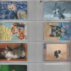 Cartes Téléphoniques de collection: LOTE DE 7 TARJETAS DE GATOS. Lote 42541186