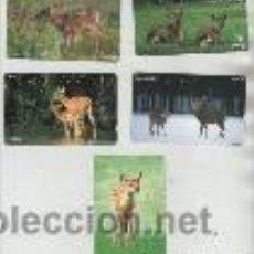 Cartes Téléphoniques de collection: LOTE DE 5 TARJETAS DE ANIMALES. Lote 42949667