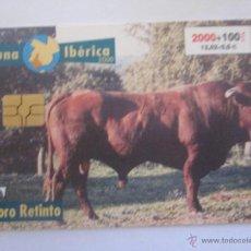 Tarjetas telefónicas de colección: TARJETA TELEFONICA ESPAÑA TORO RETINTO. FAUNA IBERICA. AÑO 2000. TIRADA 501.500. Lote 48185357