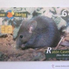Cartões de telefone de coleção: TARJETA TELEFONICA ESPAÑA RATON CASERO. FAUNA IBERICA. TIRADA 251.000. AÑO 2006. Lote 48188996
