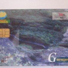 Tarjetas telefónicas de colección: TARJETA TELEFÓNICA ESPAÑA SERIE PARQUES NATURALES. GARAJONAY. TIRADA 4.500. AÑO 2001. Lote 48227239
