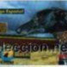 Tarjetas telefónicas de colección: ESPAÑA TARJETA TELEFONICA GALGO ESPAÑOL RAZAS CANINAS IBERICAS TT. Lote 183309060