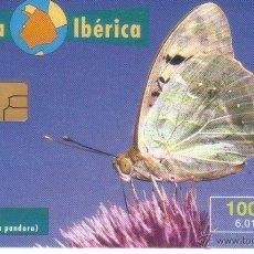 Tarjetas telefónicas de colección: FAUNA IBERICA MARIPOSA PANDORA 9/ 1999 VER DETALLE TT. Lote 183309261