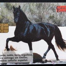 Tarjetas telefónicas de colección: TELEFÓNICA CABALLO ESPAÑOL 6€. Lote 50594775