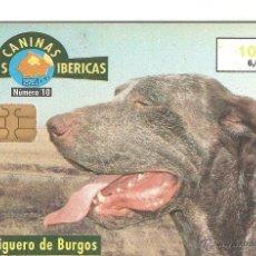 Cartes Téléphoniques de collection: TARJETA TELEFONICA TELEFONO FAUNA PERROS PERDIGUERO. Lote 189549425