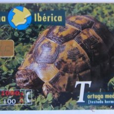 Tarjetas telefónicas de colección: TARJETA TELEFONICA TORTUGA MEDITERRANEA. Lote 51492420