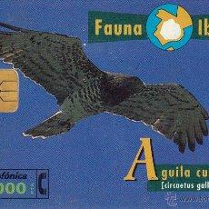 Tarjetas telefónicas de colección: ESPAÑA. FAUNA IBÉRICA. AGUILA CULEBRERA. Lote 53344495