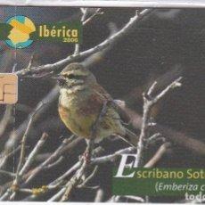 Tarjetas telefónicas de colección: P-594 TARJETA DE ESPAÑA DEL ESCRIBANO SOTEÑO FAUNA IBERICA (BIRD-PAJARO) NUEVA. Lote 64716943