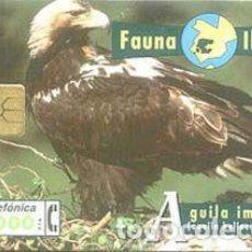 Cartes Téléphoniques de collection: TARJETA TELEFONICA ESPAÑA - B 50/B FAUNA IBERICA, AGUILA IMPERIAL - 1000PTAS -05/96 - CHIP F6 -GEM1A. Lote 76943193