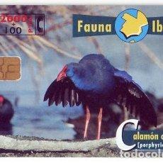 Tarjetas telefónicas de colección: TARJETA TELEFONICA PHONECARD ESPAÑA - B 72 FAUNA IBERICA - CALAMON - 2000 + 100 PTAS - 05/98. Lote 76948293