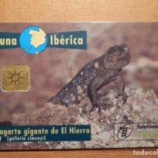 Cartes Téléphoniques de collection: TARJETA TELEFÓNICA USADA - FAUNA IBÉRICA - LAGARTO DEL HIERRO - 0797 - AÑO 1997 - TIRADA 1.000.000. Lote 78783105