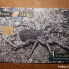 Tarjetas telefónicas de colección: TARJETA TELEFÓNICA USADA - FAUNA IBÉRICA - ARAÑA LOBO - 0708 - 2008 - TIRADA 200.010. Lote 179126596