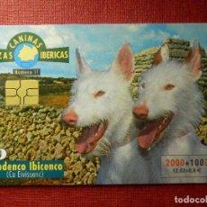 Cartes Téléphoniques de collection: TARJETA TELEFÓNICA USADA - RAZAS CANINAS IBÉRICAS - PODENCO IBICENCOS - 1100 - 2000 - TIRADA 551.500. Lote 89529440