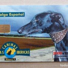 Tarjetas telefónicas de colección: TARJETA TELEFÓNICA RAZAS CANINAS IBÉRICAS - GALGO ESPAÑOL. Lote 94489970