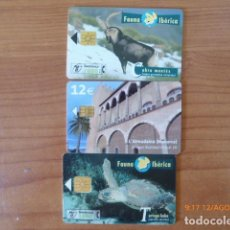 Tarjetas telefónicas de colección: 9 TARJETAS TELEFONICAS, ESPAÑA, 1 MARRUECOS, VER FOTOS,. Lote 95490775