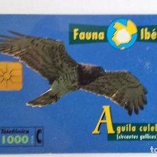 Tarjetas telefónicas de colección: TARJETA TELEFÓNICA FAUNA IBÉRICA ÁGUILA CULEBRERA . Lote 96022983