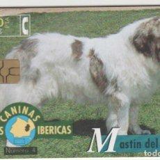 Cartões de telefone de coleção: TARJETA TELEFONO TEMA PERROS FAUNA. Lote 209768813