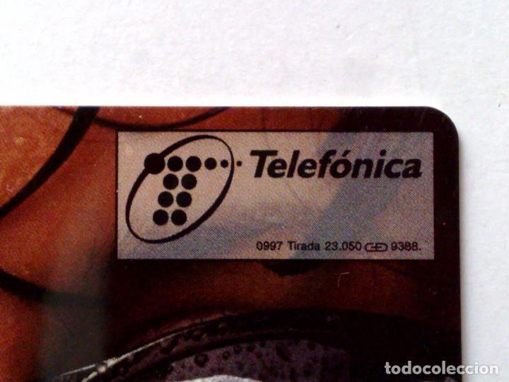 Tarjetas telefónicas de colección: P-288;TARJETA TELEFONICA-COCA~COLA-LABIOS ¡¡ENSAYO!! SIN CHIP Y FALTA NÚMERACION (DESCRIPCIÓN - Foto 2 - 126473799