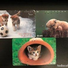 Tarjetas telefónicas de colección: 3 TARJETAS TELEFÓNICAS DE JAPONESAS, ANIMALES, GATO, PERRO, TELÉFONO, JAPÓN. Lote 136194162