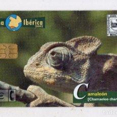 Tarjetas telefónicas de colección: TARJETA TELEFÓNICA ESPAÑOLA. FAUNA IBÉRICA. CAMALEÓN.. Lote 136703090