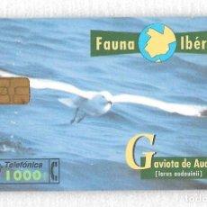 Tarjetas telefónicas de colección: TARJETA TELEFONICA FAUNA IBÉRICA. GAVIOTA AUDOUIN. Lote 137426830