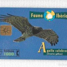 Tarjetas telefónicas de colección: TARJETA TELEFÓNICA. FAUNA IBÉRICA. ÁGUILA CULEBRERA. Lote 137428310