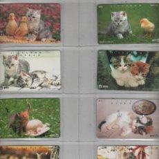 Cartes Téléphoniques de collection: TARJETAS TELEFONICAS-LOTE DE 8 TARJETAS -TEMA GATOS. Lote 169908488