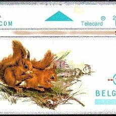 Tarjetas telefónicas de colección: TARJETA TELEFONICA USADA DE BELGICA AÑO 1.994. Lote 183012076