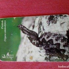 Carte telefoniche di collezione: TARJETA TELEFONICA FAUNA. Lote 199798527