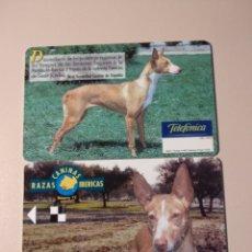 Cartes Téléphoniques de collection: PRUEBA RAZAS CANINAS. Lote 201198841