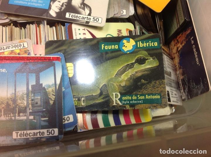 Tarjetas telefónicas de colección: LOTE DE 250 TARJETAS TELEFONICAS, DE TODO TIPO - Foto 5 - 201218795