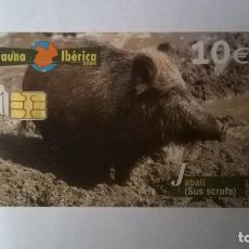 Cartes Téléphoniques de collection: TARJETA TELEFÓNICA FAUNA IBÉRICA JABALI. Lote 205733125