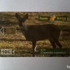 Cartes Téléphoniques de collection: TARJETA TELEFONICA FAUNA IBÉRICA CORZO. Lote 205737970