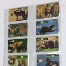 Tarjetas telefónicas de colección: COLECCION CASI COMPLETA FAUNA IBERICA - 65 TARJETAS TELEFONICAS TARJETA TELEFONO ANIMALES. Lote 207114657