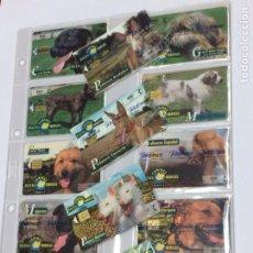 Tarjetas telefónicas de colección: COLECCION RAZAS CANINAS IBERICAS - 14 TARJETAS TELEFONICAS TARJETA TELEFONO ANIMALES PERROS. Lote 207117870