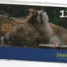 Cartes Téléphoniques de collection: CUIDAMOS TU CONFIANZA-CON FUNDA DE NUEVO. Lote 232965760