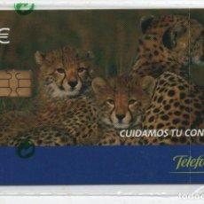 Cartes Téléphoniques de collection: CUIDAMOS TU CONFIANZA-CON FUNDA DE NUEVO. Lote 232965815
