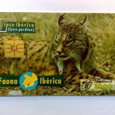 Tarjetas telefónicas de colección: TARJETA TELEFONICA:B-049/A2:LINCE IBÉRICO (1000 PTA.) ¡¡L.ESTRECHA CHIP F5 NºNEGROS!! (05/96). Lote 262045105