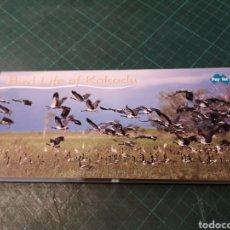 Tarjetas telefónicas de colección: BIRD LIFE OF KAKADU. Lote 295685108