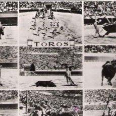 Tauromaquia: * TOROS * POSTAL FRANCESA TAURINA: TOROS. Lote 21350069