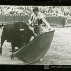 Tauromaquia: FOTOGRAFIA DE ANTONIO ORDOÑEZ. FOTOGRAFO ARJONA. SEVILLA.. Lote 16685968