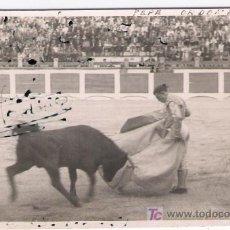 Tauromaquia: FOTOGRAFÍA 8,5X13,5. PEPE ORDOÑEZ. DEDICADA Y FIRMADA EN ANVERSO POR TORERO.. Lote 16806323