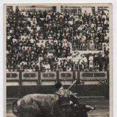 Tauromaquia: FOTO POSTAL TAURINA. AL DORSO: FOTO CONSANHI DEL NOTICIERO DE LOS LUNES, SEVILLA.. Lote 18416551