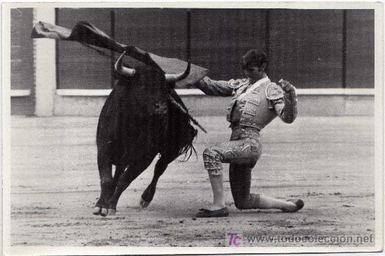 MAGNIFICA FOTOGRAFIA - MANUEL BENITEZ - EL CORDOBES (TORERO) - DANDO UN PASE DE RODILLAS (Coleccionismo - Tauromaquia)