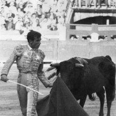 Tauromaquia: FOTOGRAFIA ORIGINAL DEL TORERO FERNANDO TORTOSA. PLAZA DE TOROS DE MONTORO.. Lote 19000807