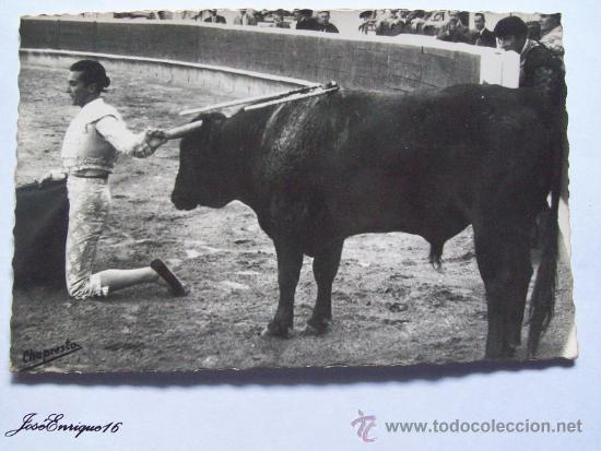 TOCANDO EL PITON CONTRARIO, TOUCHANT LA CORNE CONTRAIRE. CORRIDA DE TOROS ESPAÑA (Coleccionismos - Tauromaquia)