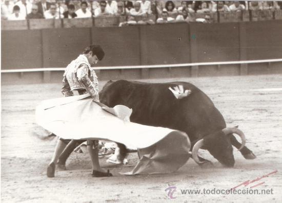 FOTOGRAFIA DEL TORERO JOSE LUIS VARGAS ALVAREZ,