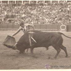 Tauromaquia: FOTOGRAFIA DEL TORERO PEPIN MARTIN VAZQUEZ. SEVILLA.. Lote 25922502